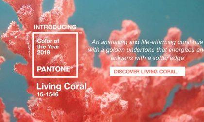 Living Coral: colore dell'anno 2019