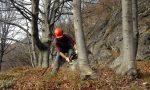 Concorso Regione Piemonte: 20 operai forestali a tempo indeterminato