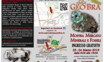 """GeoBra"" 2019: minerali, fossili e gemme in mostra"