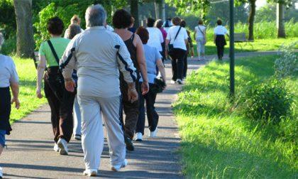 Porte aperte a Fossano per la Giornata Mondiale dell'Attività Fisica