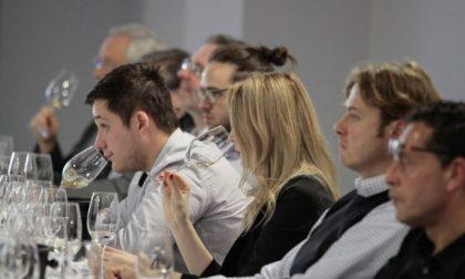 Vinitaly: protagoniste le eccellenze Made in Piemonte