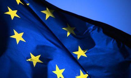 Elezioni Europee dati nazionali exit poll RAI