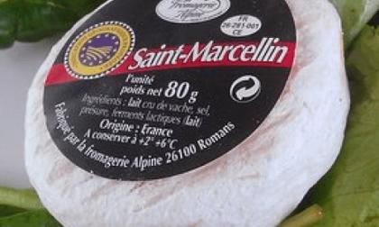 Escherichia coli nel formaggio francese: segnalate intossicazioni