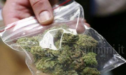 Viaggiavano con un chilo di marijuana in auto, arrestati