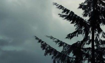Notte infernale a Bra: raffiche di vento e forti temporali