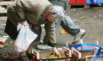 Coldiretti: 5.9% delle famiglie piemontesi vive in stato di povertà
