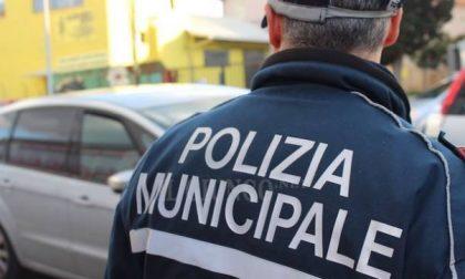 Cuneo e territorio assumono 12 vigili urbani, via al concorso