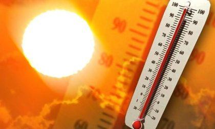 Ondate di calore 2019: Arpa rileva 40% in più di decessi