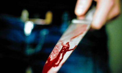 Cuneo: litigano, lei lo accoltella al petto. Grave in ospedale