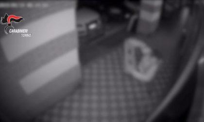 Sfondava le vetrine dei negozi per compiere i furti: arrestato