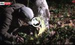Fiera del tarfufo Alba 2019: i segreti dei trifulau VIDEO