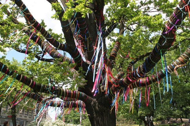 Festa dell'Albero a Bra