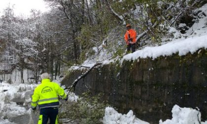 Prosegue il lavoro dei tecnici Enel in Piemonte per ripristinare l'energia elettrica