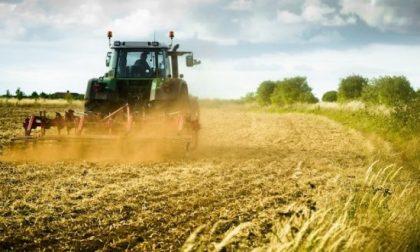 Ipotesi voucher in agricoltura: i sindacati dicono no