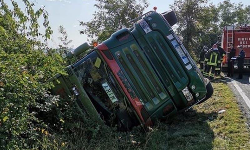 Camion carico di suini si ribalta: morti 200 maiali su 400