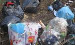 Dieci metri cubi di rifiuti abbandonati nei boschi, 600 euro di multa ai responsabili