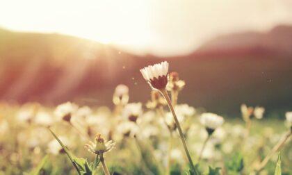Previsioni Meteo Pasqua Piemonte: temperature in (netto) calo, ma sole
