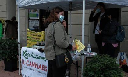 Presidio dei Radicali, distribuita marijuana terapeutica all'esterno del tribunale di Cuneo