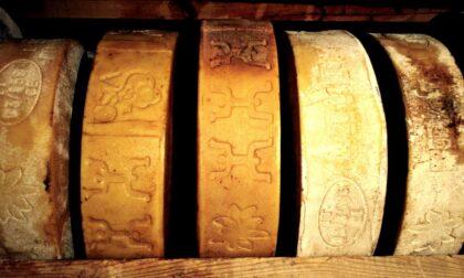"""""""Cheese"""", a Bra torna l'appuntamento dedicato a latte e formaggi"""