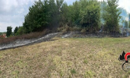Anno drammatico per gli incendi boschivi: 36 verbali da inizio anno