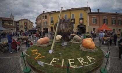 Cosa fare a Cuneo e provincia: gli eventi del weekend del 2 e 3 ottobre 2021