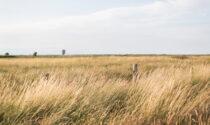 Sempre più emergenza siccità nel Cuneese