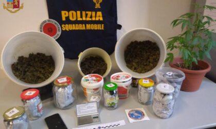 Spacciava marijuana a Fossano: arrestato 28enne di origini romene